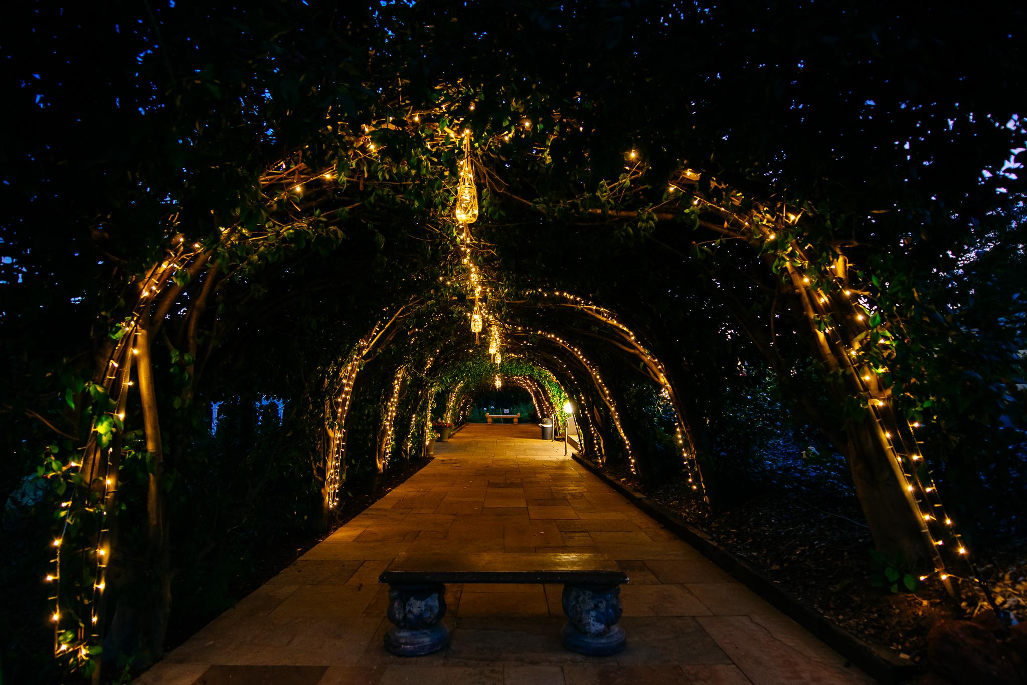 Crab Apple Walk Masonmill Gardens